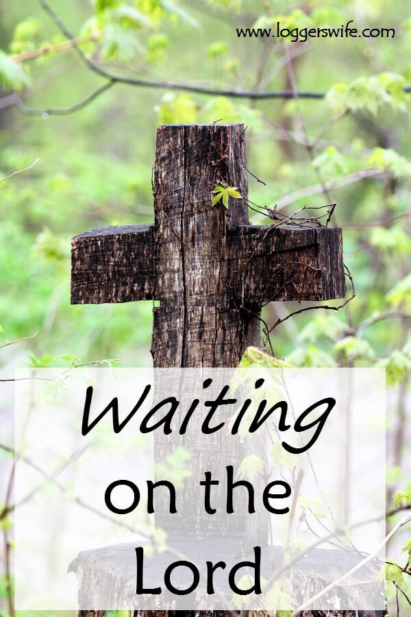 Waiting on the Lord...it can be so hard as we wait for God. Strength will rise but it can be a struggle.