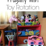 Frugality with Toy Rotation