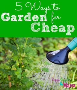 5 Ways to Garden for Cheap