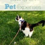 Saving Money on Pet Expenses