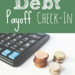 debt payoff check in