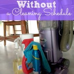 Keeping Your House Clean Without a Schedule