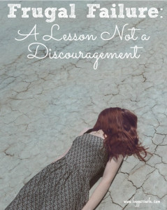 Frugal Failure – A Lesson Not a Discouragement