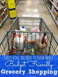Everything You Need to Know About Budget Friendly Grocery Shopping