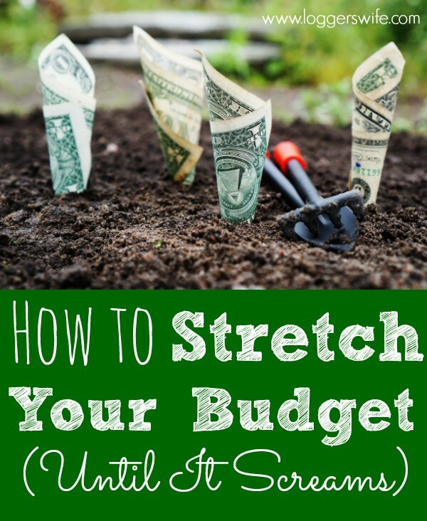 Income problem or just need to save some more money? Learn how to stretch your budget until it screams! Lots of great tips.